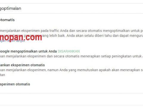 Memasang Iklan Otomatis Google Adsense Pada Website dan kelebihanya